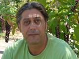 Dimitris Magriplis